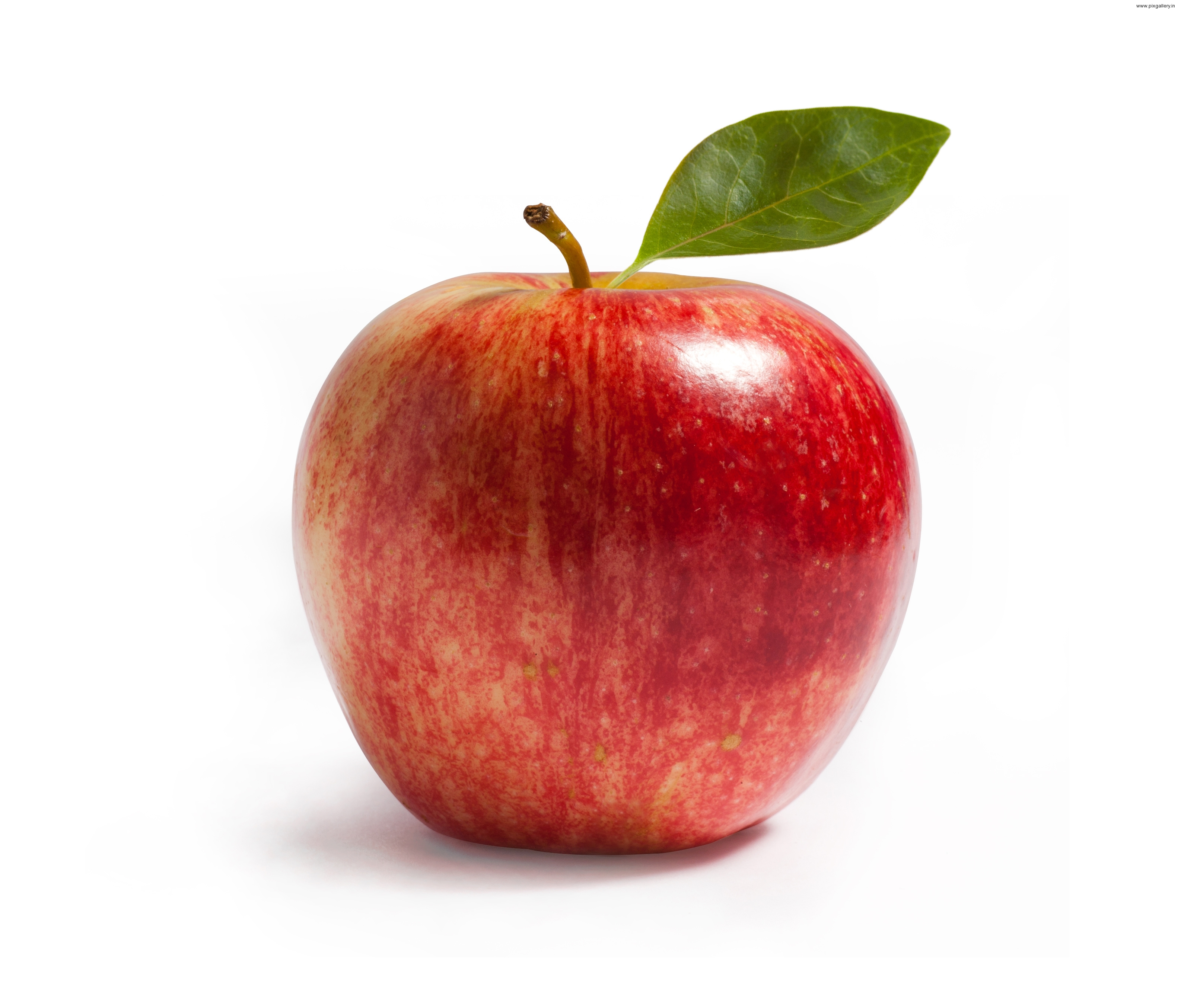 apple 7 global action plan