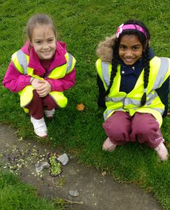 Primary School Students making Birds from seeds, rocks, and leaves found in the park